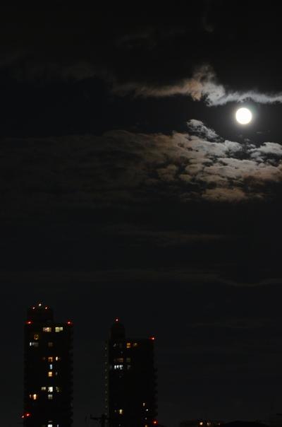111112_月夜.jpg