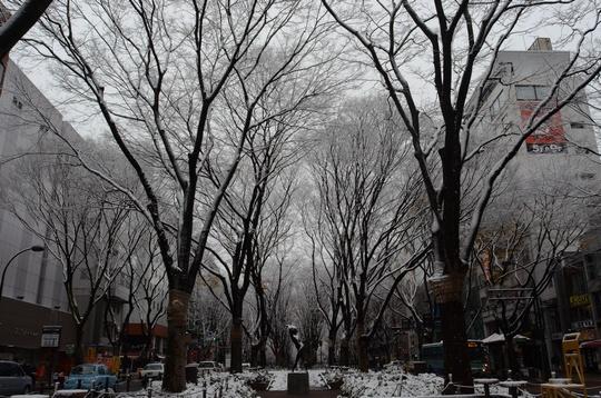 121209_定禅寺通り2.jpg