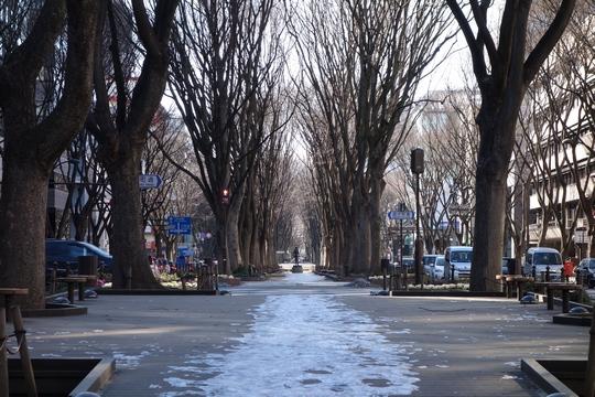 130203_定禅寺通り2.jpg
