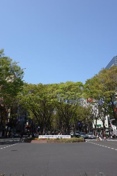 130429_定禅寺通り2.jpg