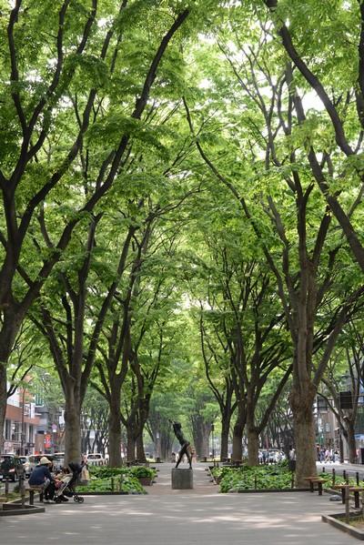 130526_定禅寺通り1.jpg