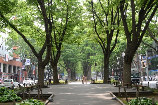 130526_定禅寺通り2.jpg