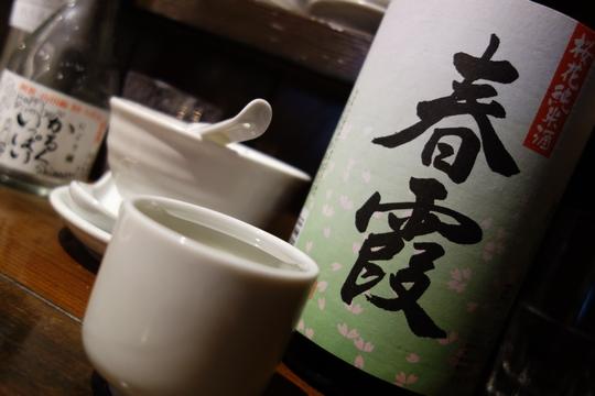 130816_シマウマ9_DSC00724.jpg