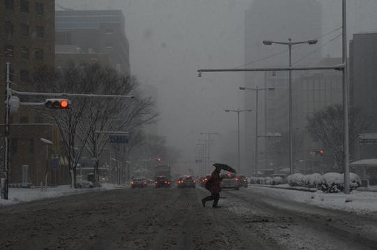130114_大雪1.jpg