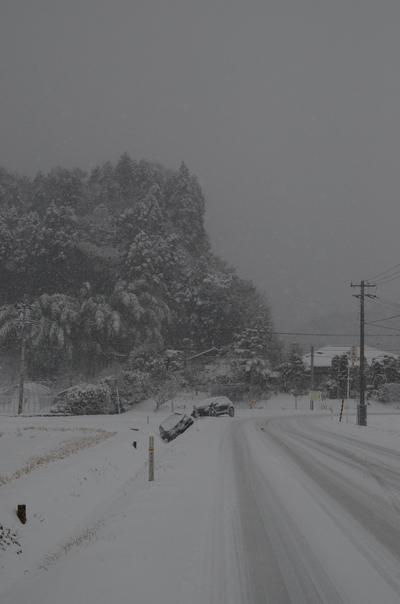 130114_大雪3.jpg