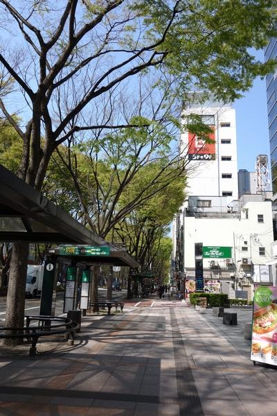 130429_定禅寺通り3.jpg