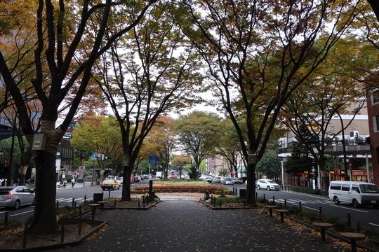 131110_定禅寺通り2_DSC01027.jpg